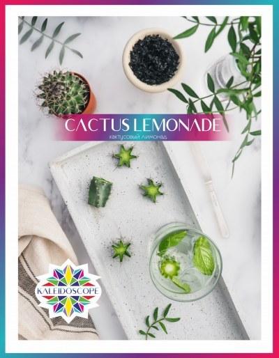 Табак для кальяна на основе чайной смеси Kaleidoscope Cactus Lemonade (Кактусовый Лимонад) 50 гр