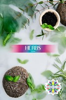 Табак для кальяна на основе чайной смеси Kaleidoscope Herbs (Травы) 50 гр