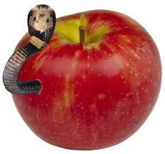 Табак для кальяна на основе чайной смеси Cobra Origins Apple (яблоко) 50г