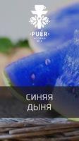 Табак для  кальяна на основе чайной смеси Puer Pepones (Синяя дыня) 100 гр